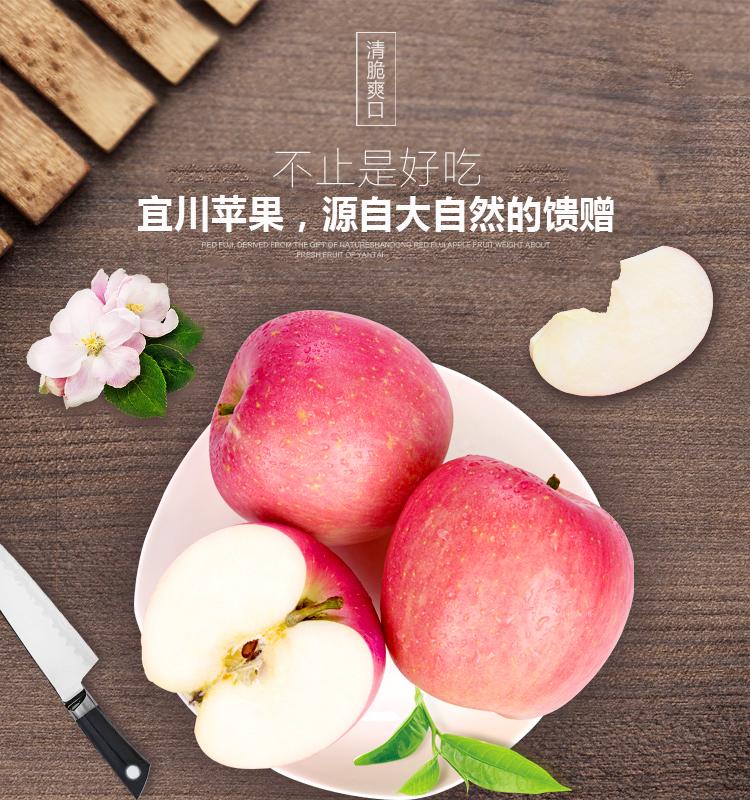 洛川苹果_01.jpg