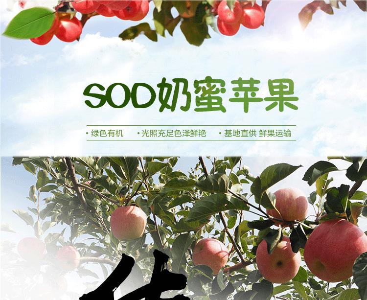 华红绿盒子_01.png