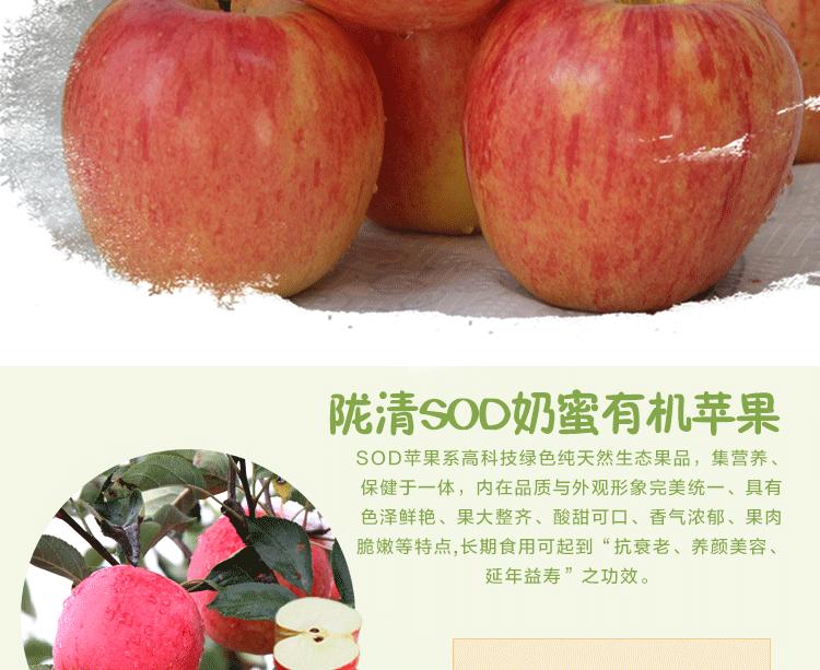 华红绿盒子_03.png