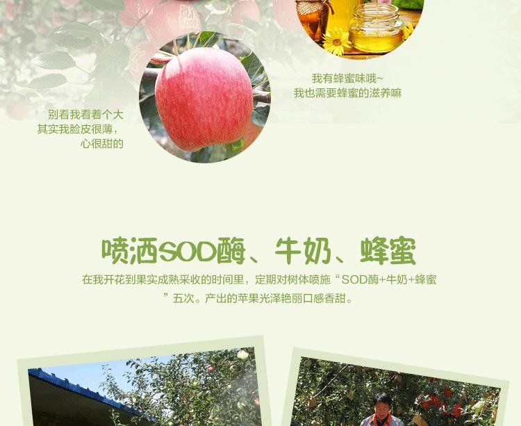 华红绿盒子_05.png
