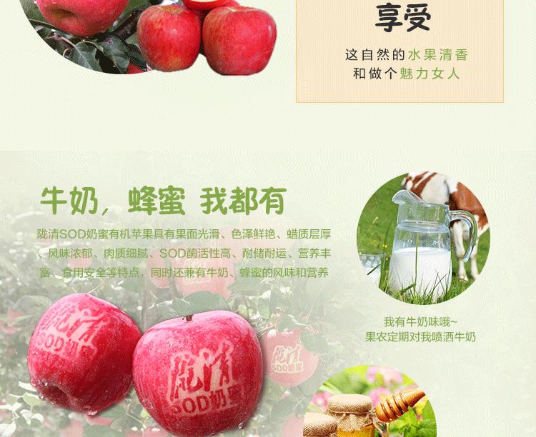 华红绿盒子_04.png