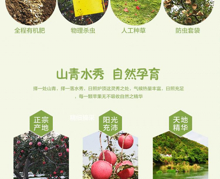 华红绿盒子_07.png