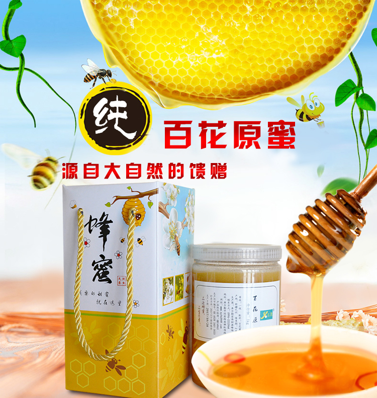 新版-红枣花纯蜂蜜250_01.jpg