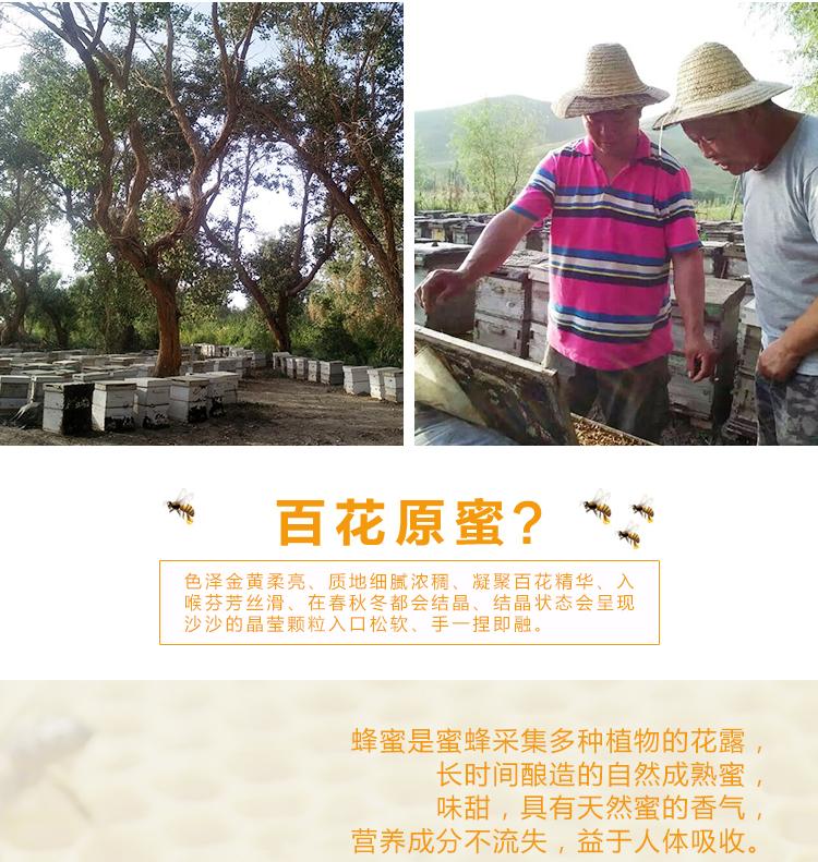 新版-红枣花纯蜂蜜250_04.jpg